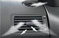 Fragrances & Odor Eliminators